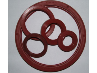 SEALING RING SI GP 160*190*15